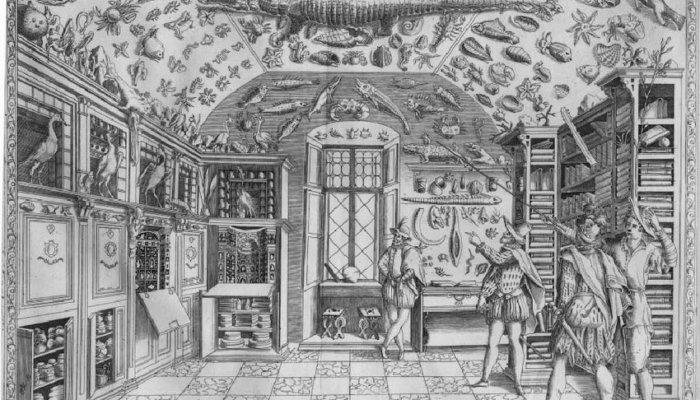 Museum of Ferrante Imperato 1599